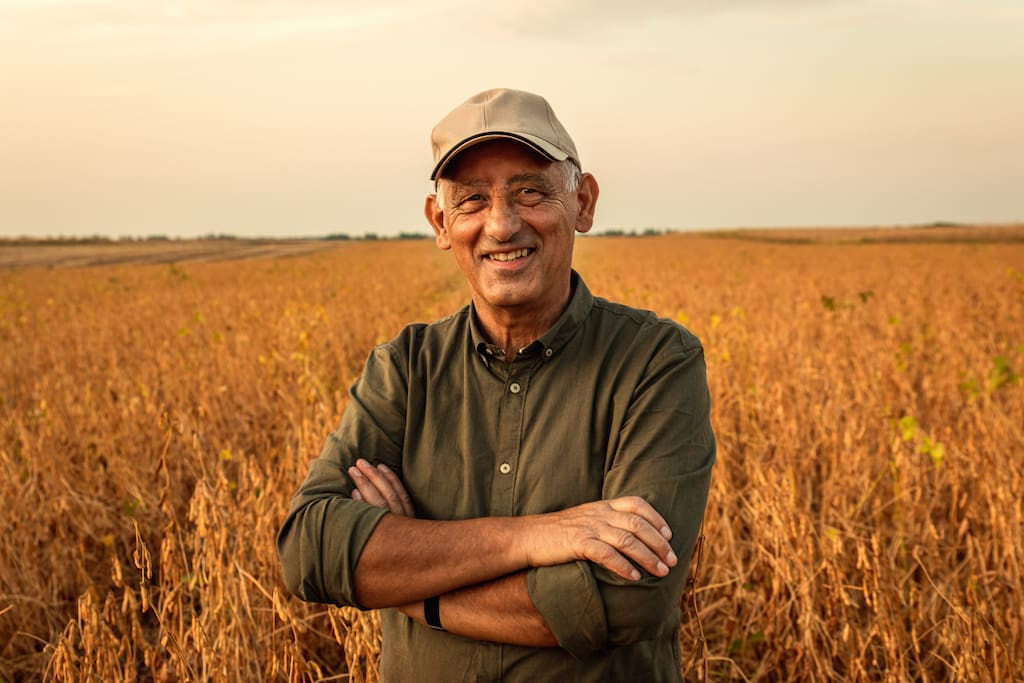 Portrait of senior farmer standing in soybean field at sunset